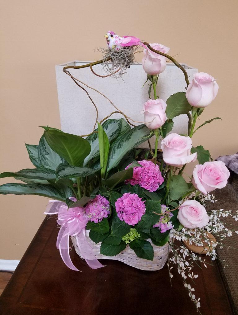 moms favorite plants