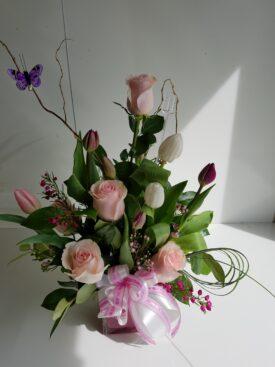 Spring Boquete